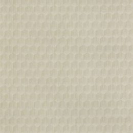 What The Hex - Acute Neutral Wallcover